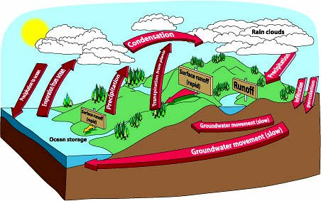 Water Cycle Steps Water Cycle Steps For Kids