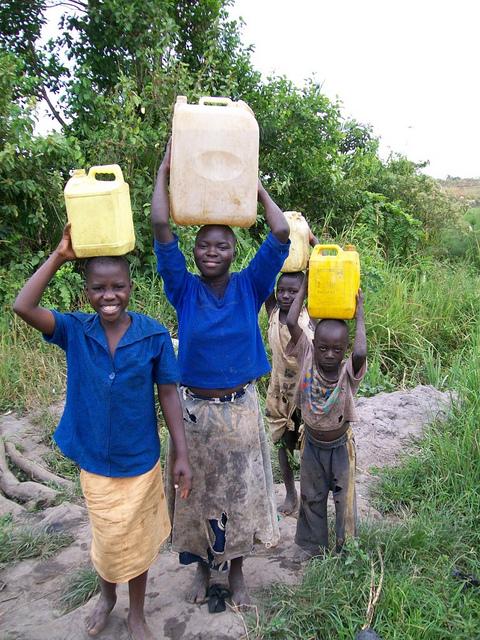 Photo of Katikara