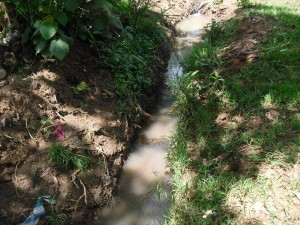 The Water Project : nabingenge-naitiri-nearby-stream-currently-used-for-water-1280x960-2