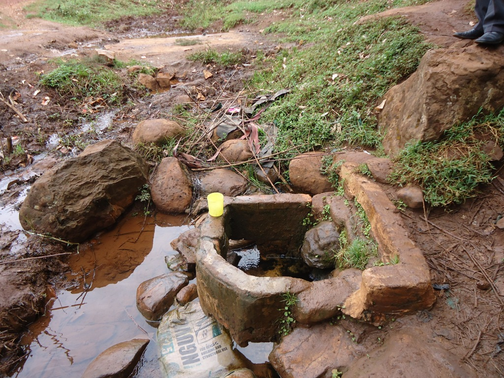 The Water Project : kositany-current-water-source-2