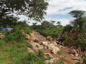 The Water Project : vinya-wa-kyangwasi-12018dls-6
