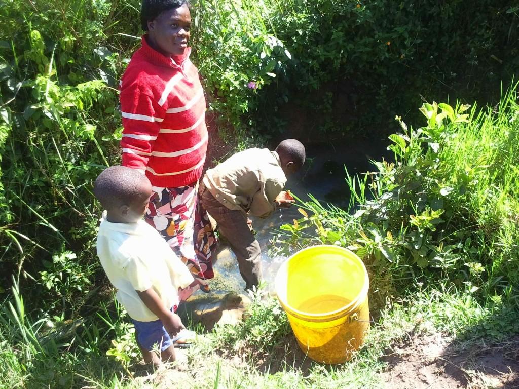 Photo of Kamburu Spring Catchment Project