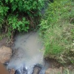 The Water Project: Soysambu Spring Catchment Project -