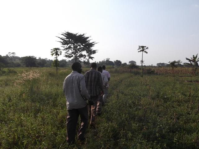 Photo of Mpumwe II