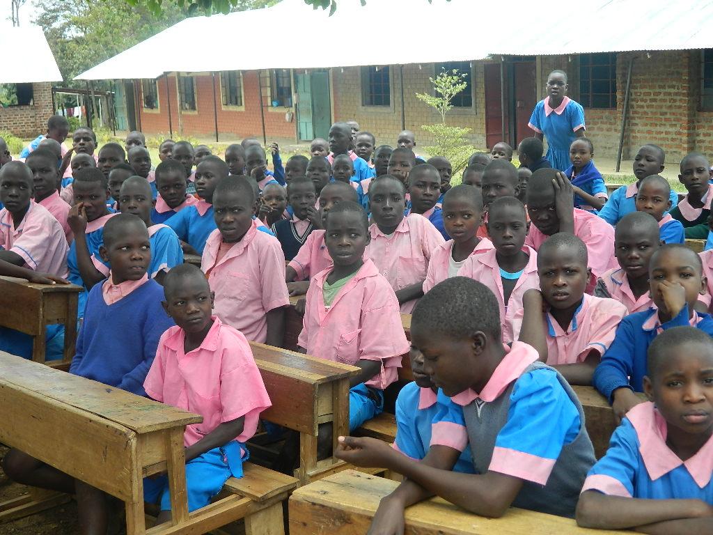Free primary education in kenya 2 essay