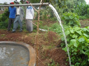 The Water Project : kenya4204-test-pumping