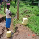 The Water Project: Peresten Spring Catchment Project -