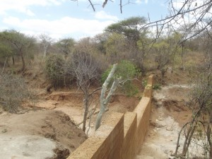 The Water Project : kenya4041-6