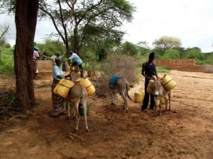 The Water Project : kenya4041-23