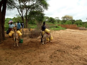 The Water Project : kenya4041-24