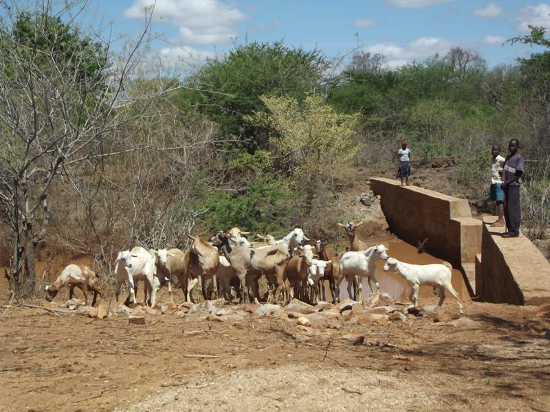 Photo of Ndinswii Community