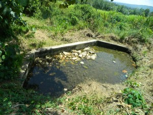 The Water Project : kenya4256-06-a-source-from-which-water-is-pumped-to-the-tank