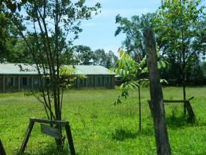 The Water Project : kenya4256-22-the-neighbouring-chebwayi-school