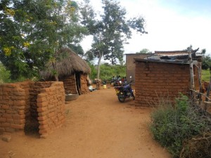The Water Project : kenya4297-01-a-general-view-of-second-members-homstead