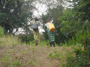 The Water Project : kenya4297-12-members-carry-water-home-on-their-backs