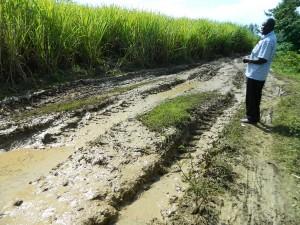 The Water Project : kenya4258-01-the-road-to-eshikulu-community