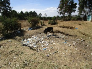 The Water Project : kenya4341-02-compost