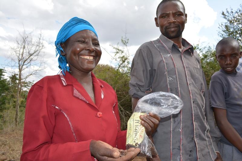The Water Project : shg-matoma-nyumba-kumi_seedlings-distribution_june-2015-25-2