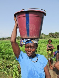 The Water Project : sierraleone5070-02-previous-water-source