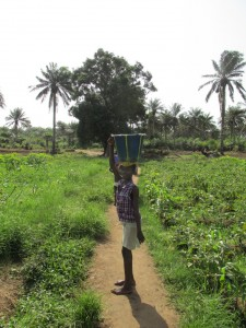 The Water Project : sierraleone5070-03-previous-water-source