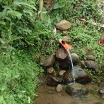 The Water Project: Mumuli Community -  Unprotected Spring At Mumuli Village