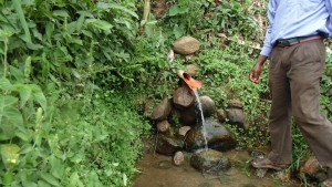 The Water Project:  Unprotected Spring At Mumuli Village
