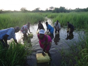 The Water Project : uganda686-01-kitongozi-previous-water-source