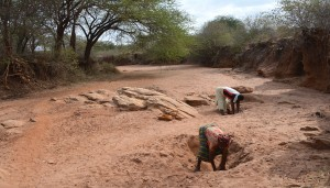 The Water Project : water-collecting-from-scoop-holes-kwa-mutunga-gabion-project-shg-5