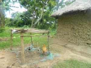 The Water Project : kenya4338b-51-dishrack