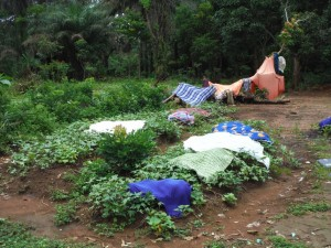 The Water Project : sierraleone5066-53-clothes-drying-on-the-ground