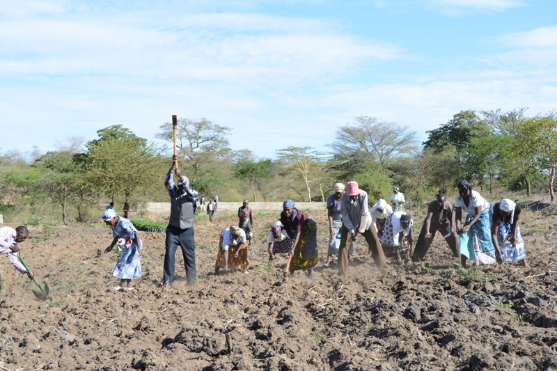 The Water Project : kenya4390-01-farm-preparation