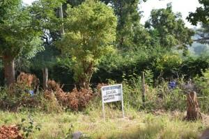 The Water Project : kenya4393-01-mituvu-secondary-school