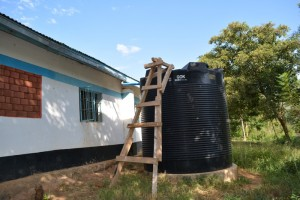 The Water Project : kenya4393-14-existing-water-structures