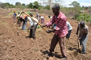 The Water Project : kenya4396-01-kee-drip-irrigation-farm