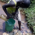 The Water Project: Shiyenga Spring Protection and Sanitation Project -