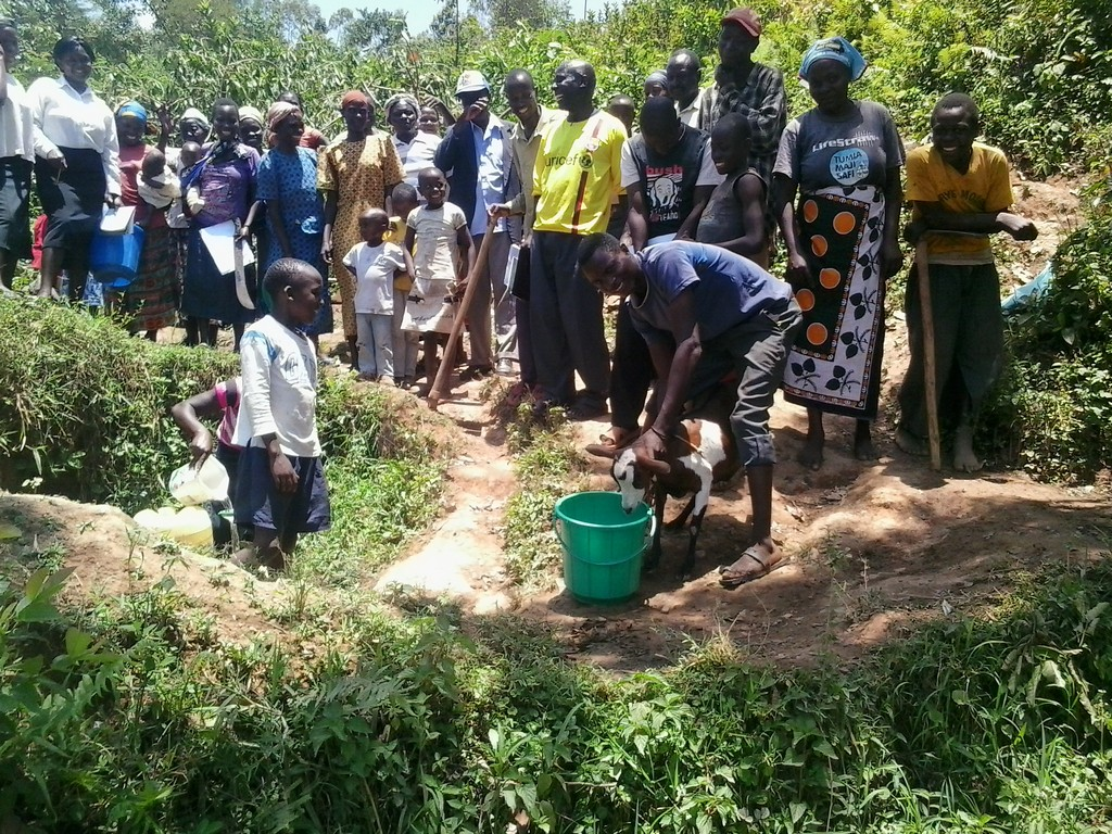 The Water Project : kenya4427-08-spring-training