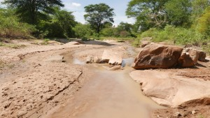 The Water Project : kenya4386-105