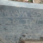 The Water Project: Shamwama Spring Protection and Sanitation Project -
