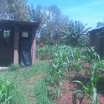 The Water Project: Melicsadeck Spring Protection and Sanitation Project -
