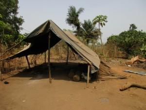 The Water Project : 11-sierraleone5080-community