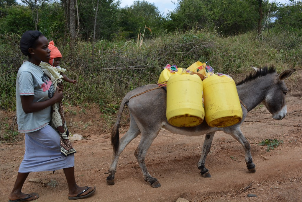 The Water Project : 18-kenya4477-fetching-water