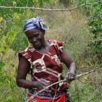 The Water Project : 2-kenya4478-self-help-group-members