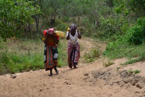 The Water Project : 21-kenya4478-fetching-water