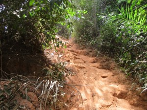 The Water Project : 19-sierraleone5082-steep-hill-to-water