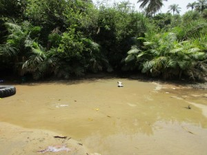 The Water Project : 3-sierraleone5082-currrent-water-source