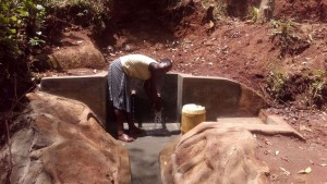 The Water Project : 20-kenya4559-protected-spring