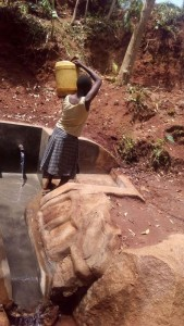 The Water Project : 21-kenya4559-protected-spring