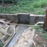 The Water Project: Munyanya Community, Munyanya Spring -