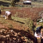 The Water Project : 2-kenya4567-unprotected-spring