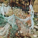 The Water Project : 8-kenya4567-mosquito-net